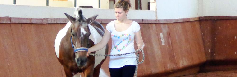 Curso de Hipoterapia/Equitação Terapêutica, em novembro na APCC